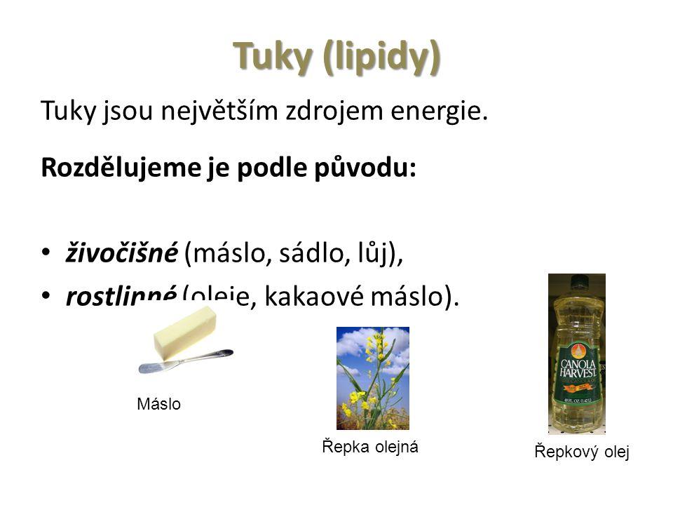 Tuky (lipidy) Tuky jsou největším zdrojem energie.