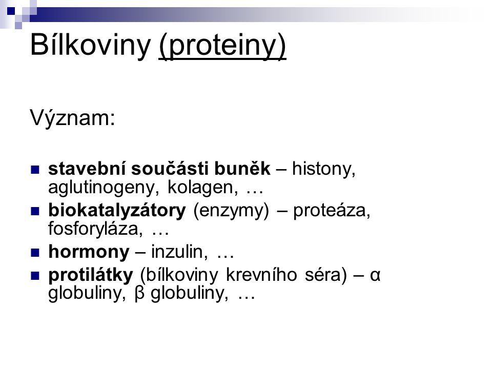 Bílkoviny (proteiny) Význam: stavební součásti buněk – histony, aglutinogeny, kolagen, … biokatalyzátory (enzymy) – proteáza, fosforyláza, … hormony – inzulin, … protilátky (bílkoviny krevního séra) – α globuliny, β globuliny, …