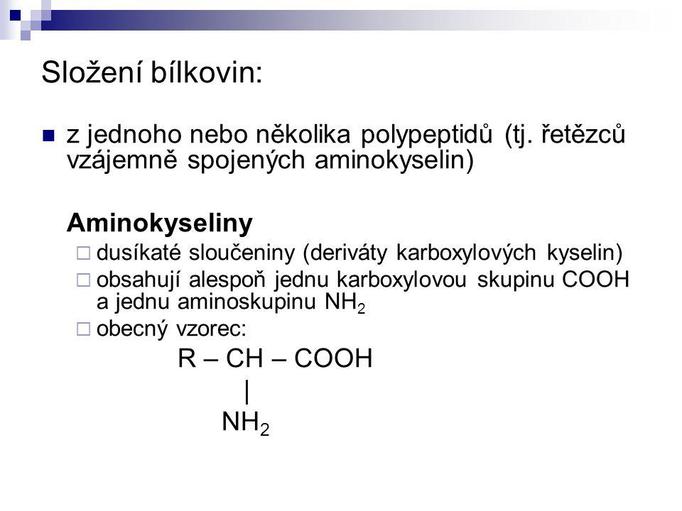 Složení bílkovin: z jednoho nebo několika polypeptidů (tj.