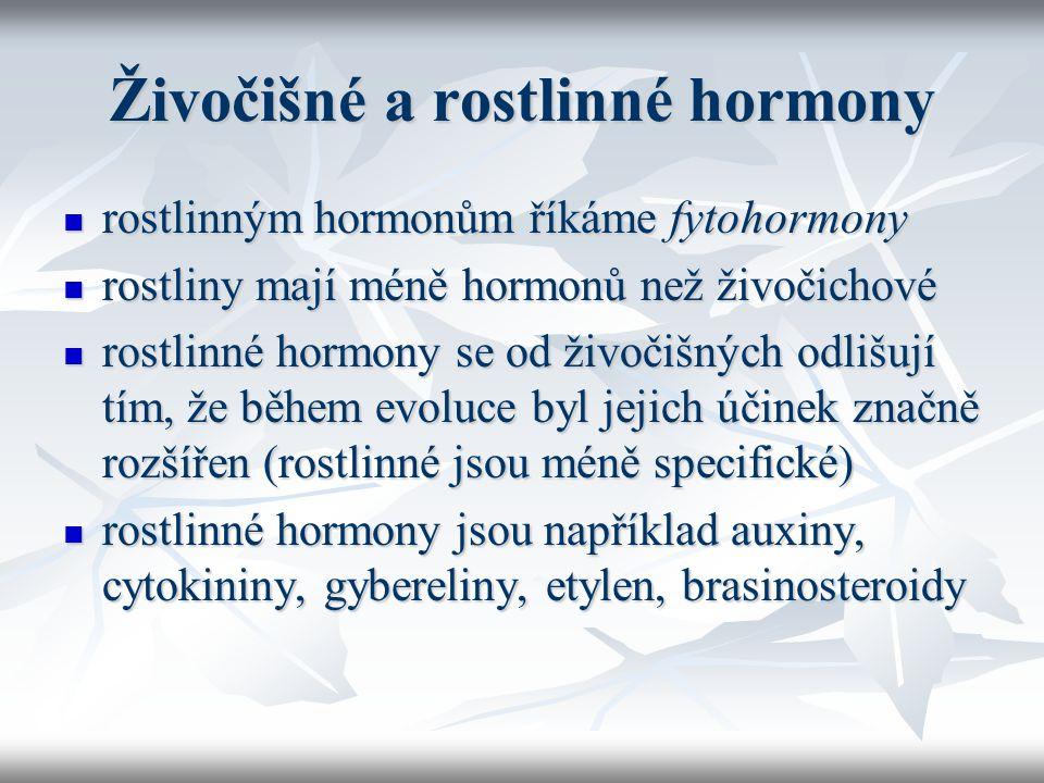 Živočišné a rostlinné hormony rostlinným hormonům říkáme fytohormony rostlinným hormonům říkáme fytohormony rostliny mají méně hormonů než živočichové