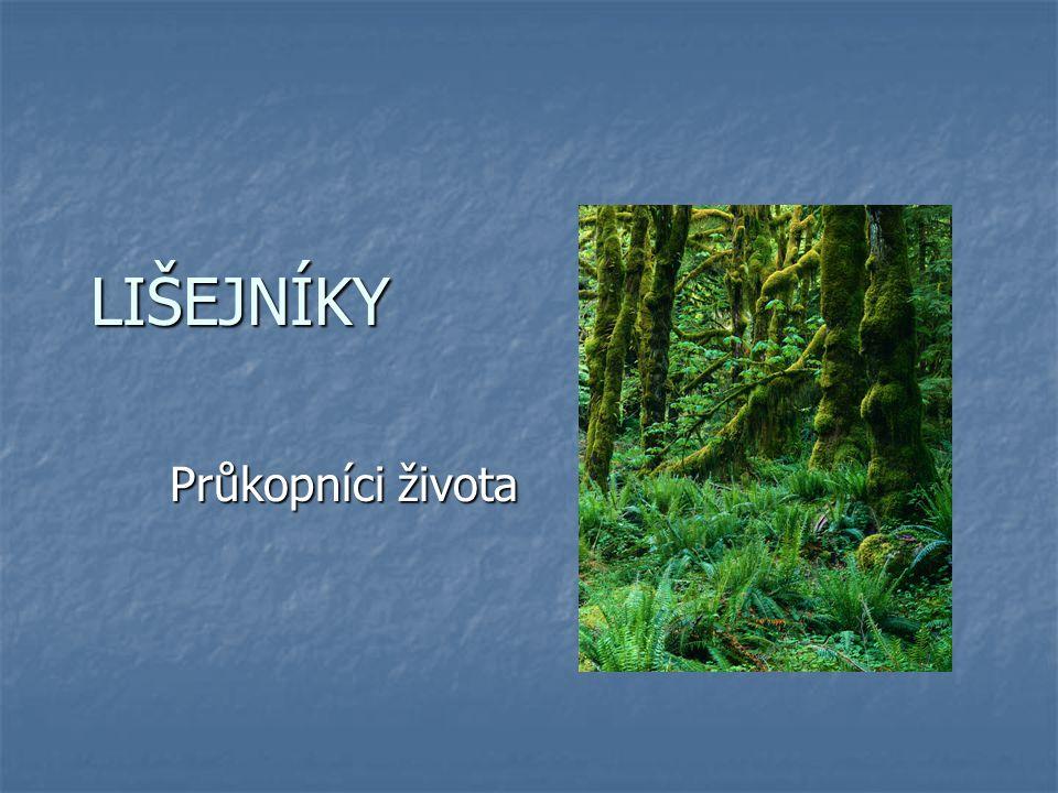 Lišejníky Lišejníky jsou organismy složené z houbových vláken a zelených řas nebo sinic.