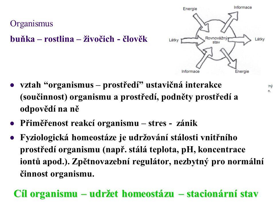 """Organismus buňka – rostlina – živočich - člověk Cíl organismu – udržet homeostázu – stacionární stav vztah """"organismus – prostředí"""" ustavičná interakc"""
