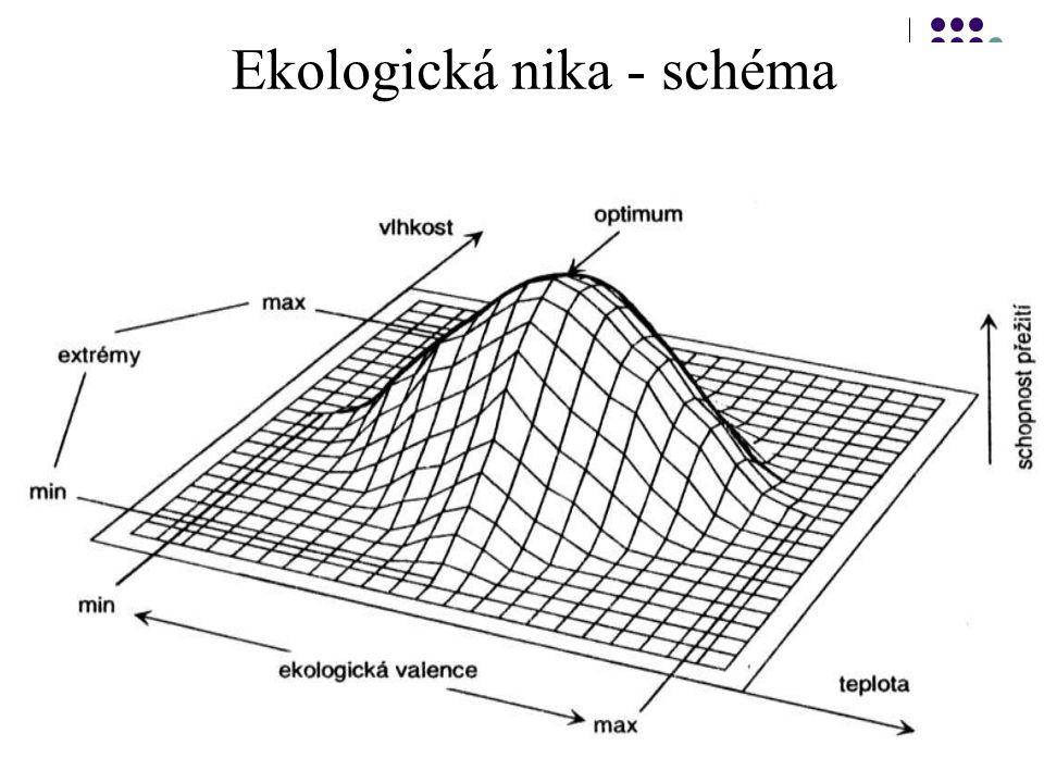 """Abiotické faktory a ekologické limity Rozsah """"intenzity nebo koncentrace"""" kteréhokoli faktoru v prostředí, kterému se organismus přizpůsobuje, se nazý"""