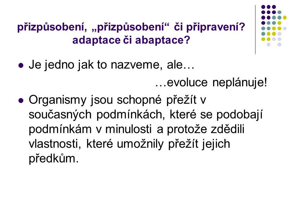 """přizpůsobení, """"přizpůsobení"""" či připravení? adaptace či abaptace? Je jedno jak to nazveme, ale… …evoluce neplánuje! Organismy jsou schopné přežít v so"""
