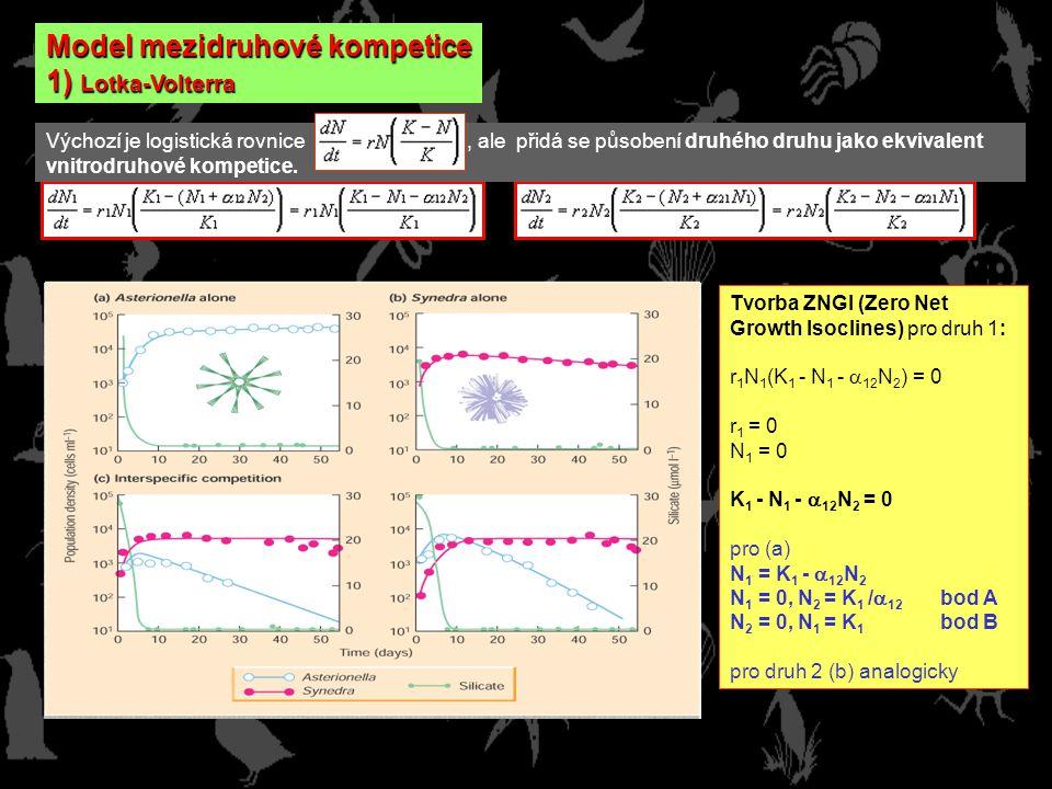 Model mezidruhové kompetice 1) Lotka-Volterra Výchozí je logistická rovnice, ale přidá se působení druhého druhu jako ekvivalent vnitrodruhové kompetice.