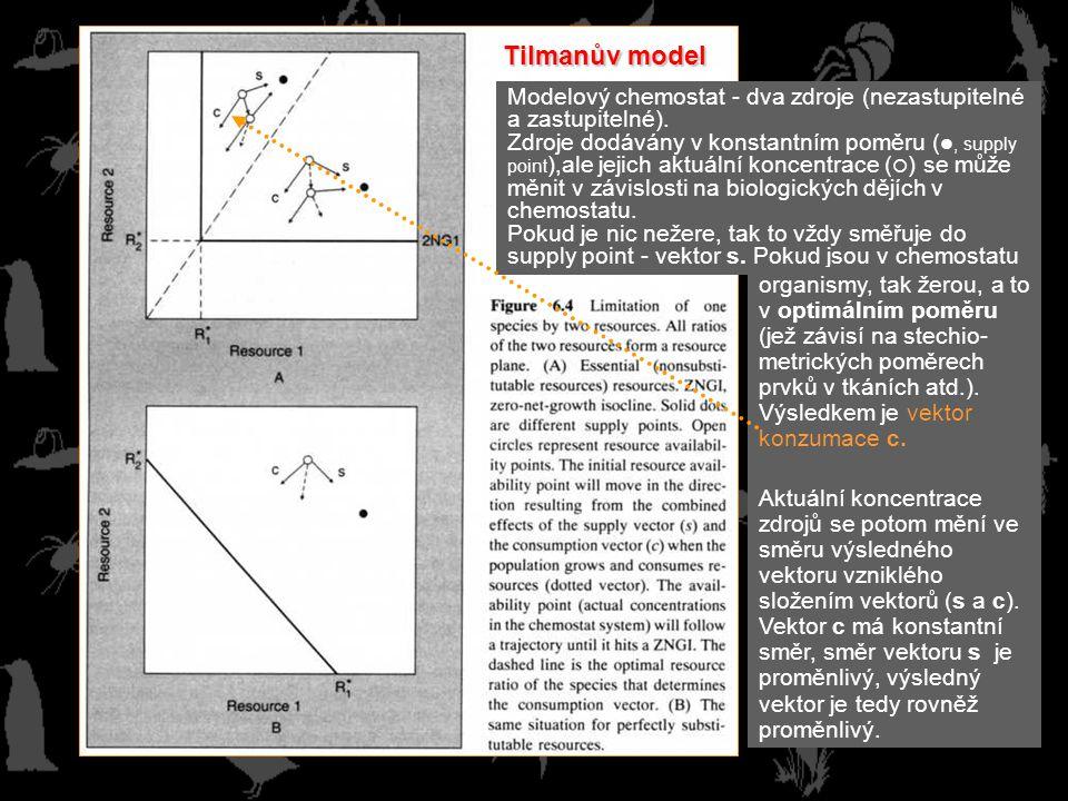 Tilmanův model Modelový chemostat - dva zdroje (nezastupitelné a zastupitelné).