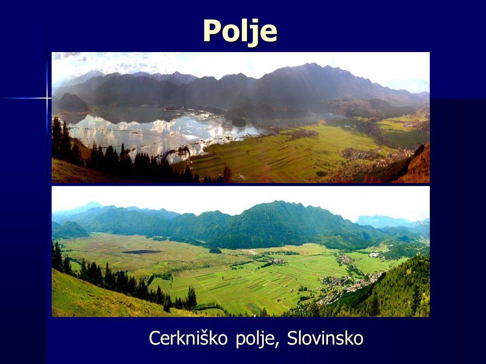 Polje Cerkniško polje, Slovinsko