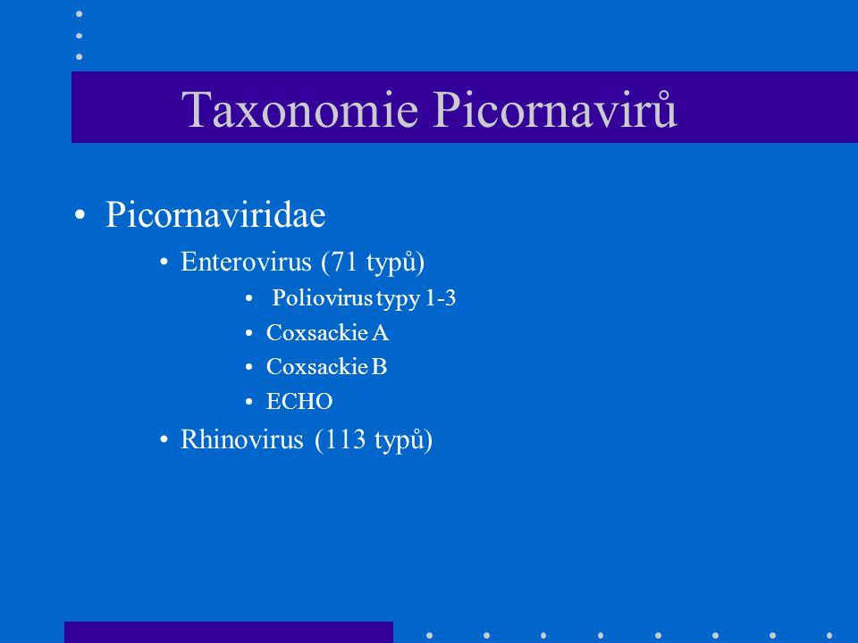Taxonomie Picornavirů Picornaviridae Enterovirus (71 typů) Poliovirus typy 1-3 Coxsackie A Coxsackie B ECHO Rhinovirus (113 typů)