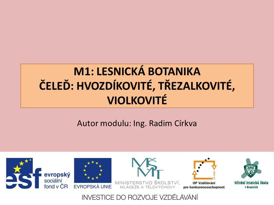violka Rivinova – Viola riviniana V: do 35 cm S: L: srdčité, širší než delší K: světle modrofialové, větší, ostruha bílá, vyrůstají z paždí listů, nevonné, kvete IV-V E: teplomilný druh, minerálně chudé a sušší půdy, světlomilný Z: