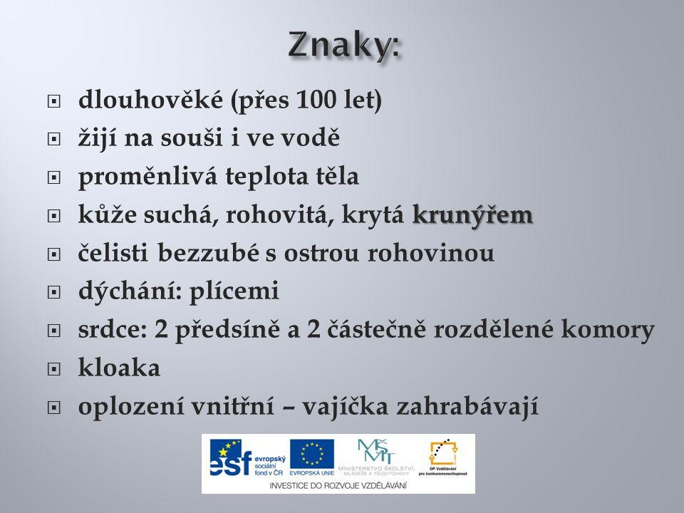 Želva bahenní je v ČR: a)všude hojně žijící b)kriticky ohrožená c)vůbec se nevyskytuje