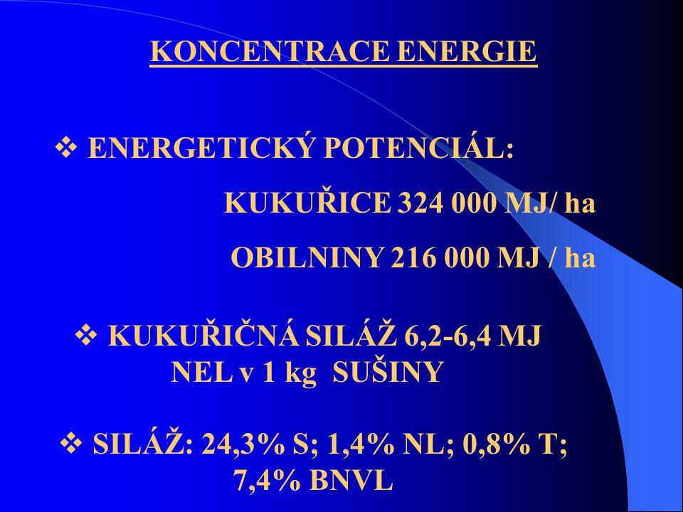 KONCENTRACE ENERGIE  ENERGETICKÝ POTENCIÁL: KUKUŘICE 324 000 MJ/ ha OBILNINY 216 000 MJ / ha  KUKUŘIČNÁ SILÁŽ 6,2-6,4 MJ NEL v 1 kg SUŠINY  SILÁŽ: 24,3% S; 1,4% NL; 0,8% T; 7,4% BNVL