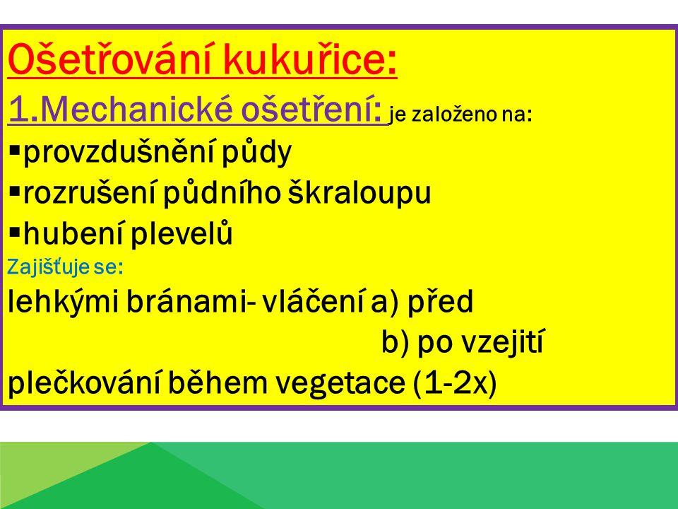 2.Chemické ošetření: Kukuřice má vyšší odolnost proti chorobám a škůdcům.