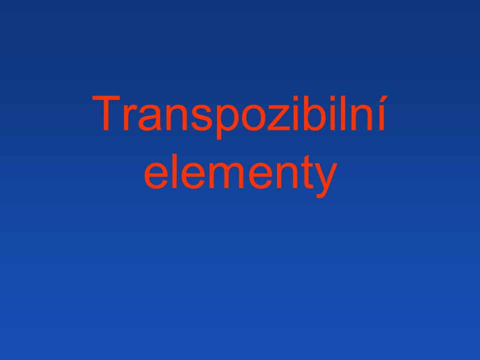 Transpozibilní elementy