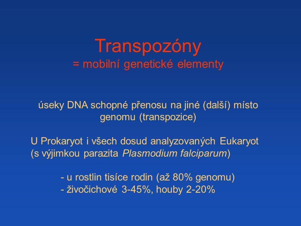 Transpozóny = mobilní genetické elementy úseky DNA schopné přenosu na jiné (další) místo genomu (transpozice) U Prokaryot i všech dosud analyzovaných Eukaryot (s výjimkou parazita Plasmodium falciparum) - u rostlin tisíce rodin (až 80% genomu) - živočichové 3-45%, houby 2-20%