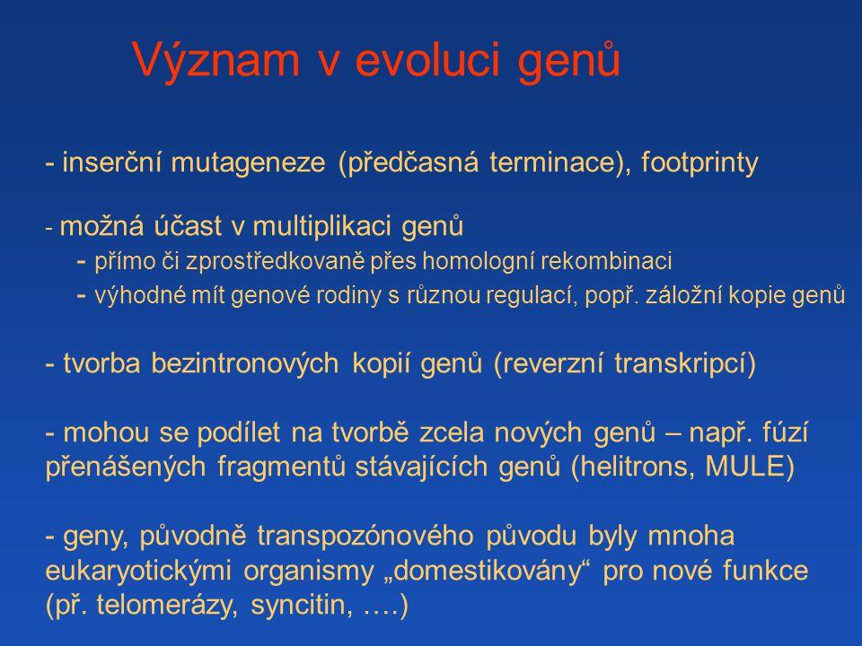 Význam v evoluci genů - inserční mutageneze (předčasná terminace), footprinty - možná účast v multiplikaci genů - přímo či zprostředkovaně přes homolo