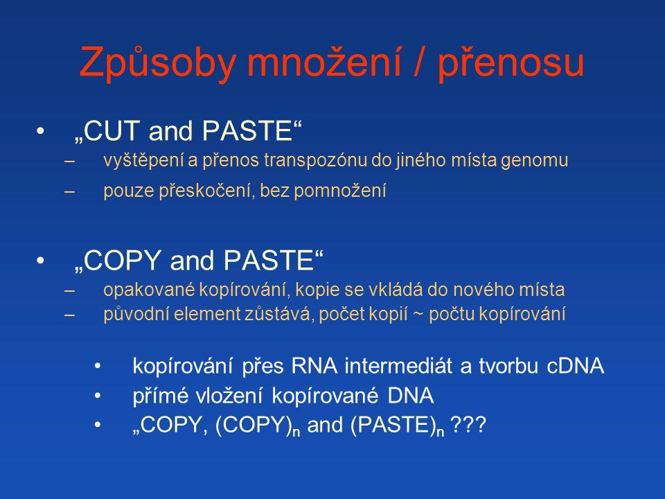 """Způsoby množení / přenosu """"CUT and PASTE –vyštěpení a přenos transpozónu do jiného místa genomu –pouze přeskočení, bez pomnožení """"COPY and PASTE –opakované kopírování, kopie se vkládá do nového místa –původní element zůstává, počet kopií ~ počtu kopírování kopírování přes RNA intermediát a tvorbu cDNA přímé vložení kopírované DNA """"COPY, (COPY) n and (PASTE) n ???"""