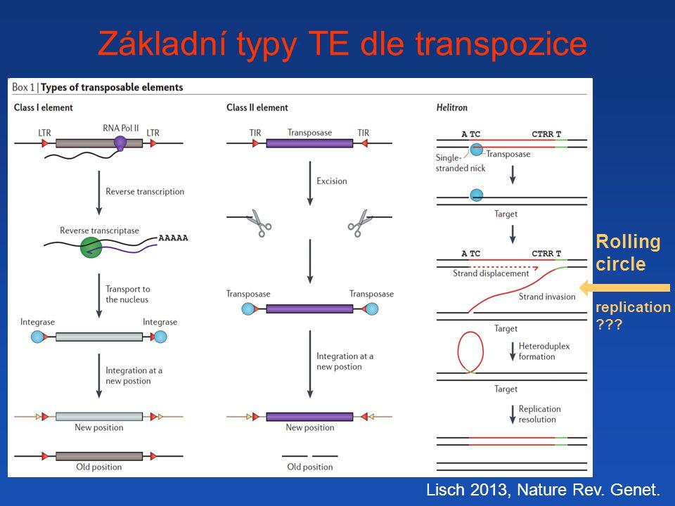 Základní typy TE dle transpozice Lisch 2013, Nature Rev. Genet. Rolling circle replication ???