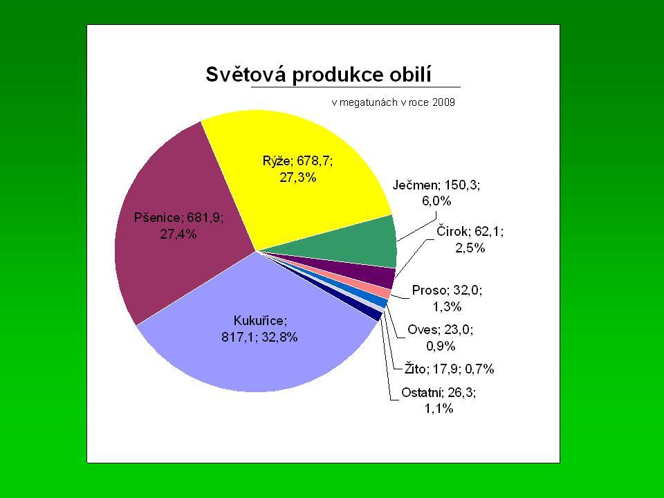 Kukuřice  objemem sklizně je dnes nejvýznamnější obilovinou  průměrná roční produkce = 810,9 mil.tun (průměr 2007-09)  v roce 2009 to bylo 817,1 mil.tun.