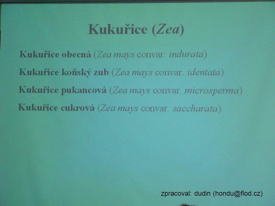 zpracoval: dudin (hondu@flod.cz)
