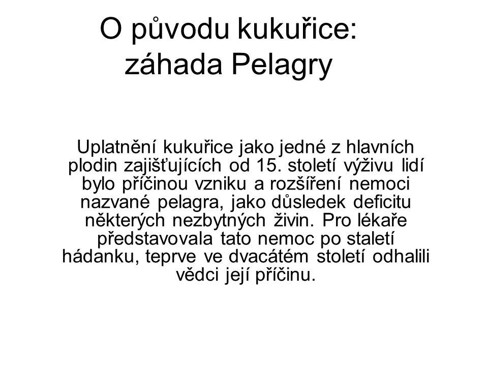 Pelagra, zvaná nemoc kyselé kůže Ve všech oblastech, kde se rozšířilo pěstování kukuřice, se postupně rozšířila i nemoc nazvaná pelagra.