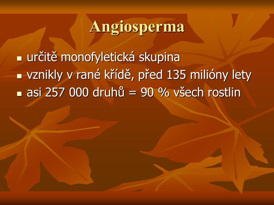 Angiosperma určitě monofyletická skupina určitě monofyletická skupina vznikly v rané křídě, před 135 milióny lety vznikly v rané křídě, před 135 milió