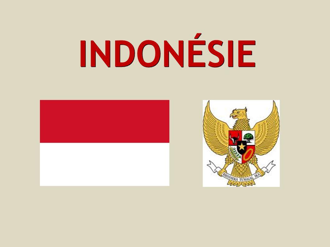 ZÁKLADNÍ INFORMACE Hlavní město: Jakarta Státní zřízení: republika Rozloha: 1 919 440 km² Počet obyvatel: 231 369 500 Sousední státy: Papua Nová Guinea Východní Timor Malajsie Singapur Filipíny Austrálie indické území Andamany a Nikobary Jazyk: indonéština Časové pásmo: +6-8 hodin od České republiky - je rozdělena do tří časových pásem Měna: indonéská rupie