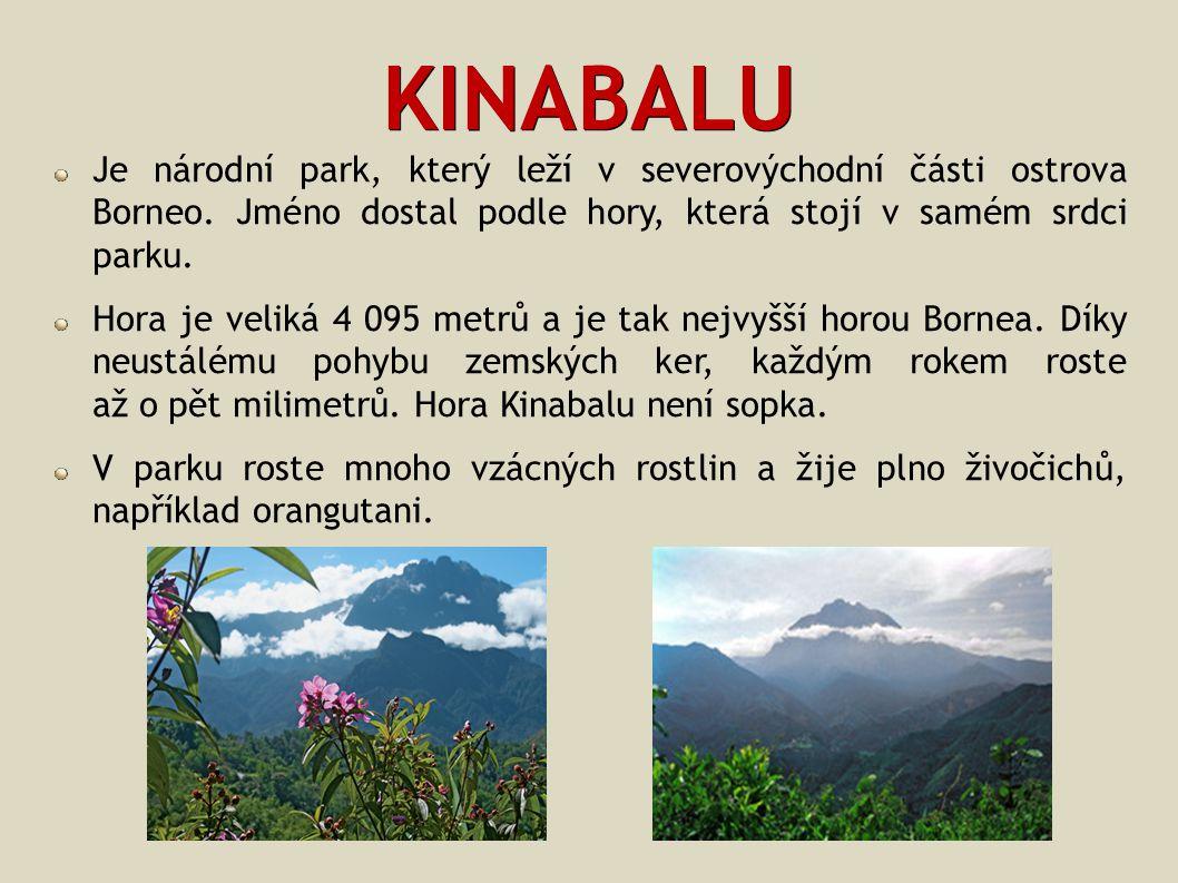 KINABALU Je národní park, který leží v severovýchodní části ostrova Borneo. Jméno dostal podle hory, která stojí v samém srdci parku. Hora je veliká 4