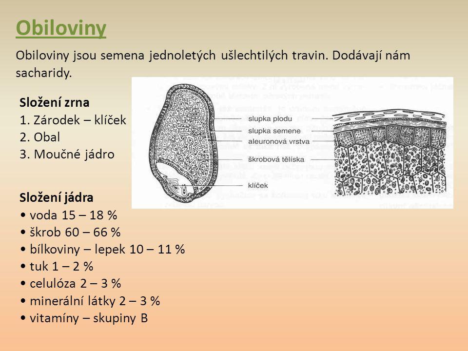 Obiloviny Obiloviny jsou semena jednoletých ušlechtilých travin. Dodávají nám sacharidy. Složení zrna 1. Zárodek – klíček 2. Obal 3. Moučné jádro Slož