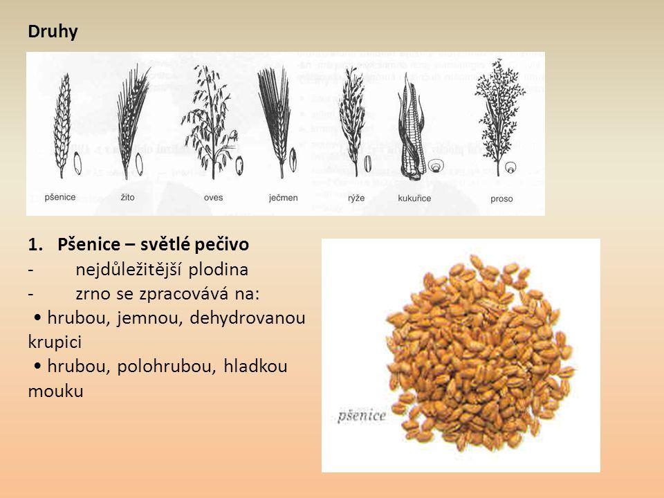 Druhy 1. Pšenice – světlé pečivo - nejdůležitější plodina - zrno se zpracovává na: hrubou, jemnou, dehydrovanou krupici hrubou, polohrubou, hladkou mo