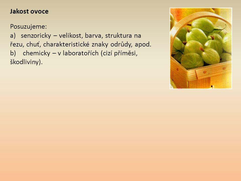 Jakost ovoce Posuzujeme: a) senzoricky – velikost, barva, struktura na řezu, chuť, charakteristické znaky odrůdy, apod. b) chemicky – v laboratořích (