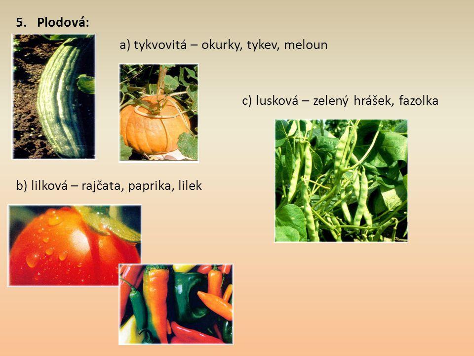 5. Plodová: a) tykvovitá – okurky, tykev, meloun b) lilková – rajčata, paprika, lilek c) lusková – zelený hrášek, fazolka