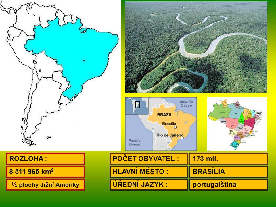 POVRCH : S – jižní část Guyanské vysočiny SZ – Amazonská nížina JV – Brazilská vysočina PODNEBÍ : tropické běloši, mulati, černoši, brazilští Indiáni OBYVATELSTVO : MĚSTA : Sao Paulo - 18 mil.