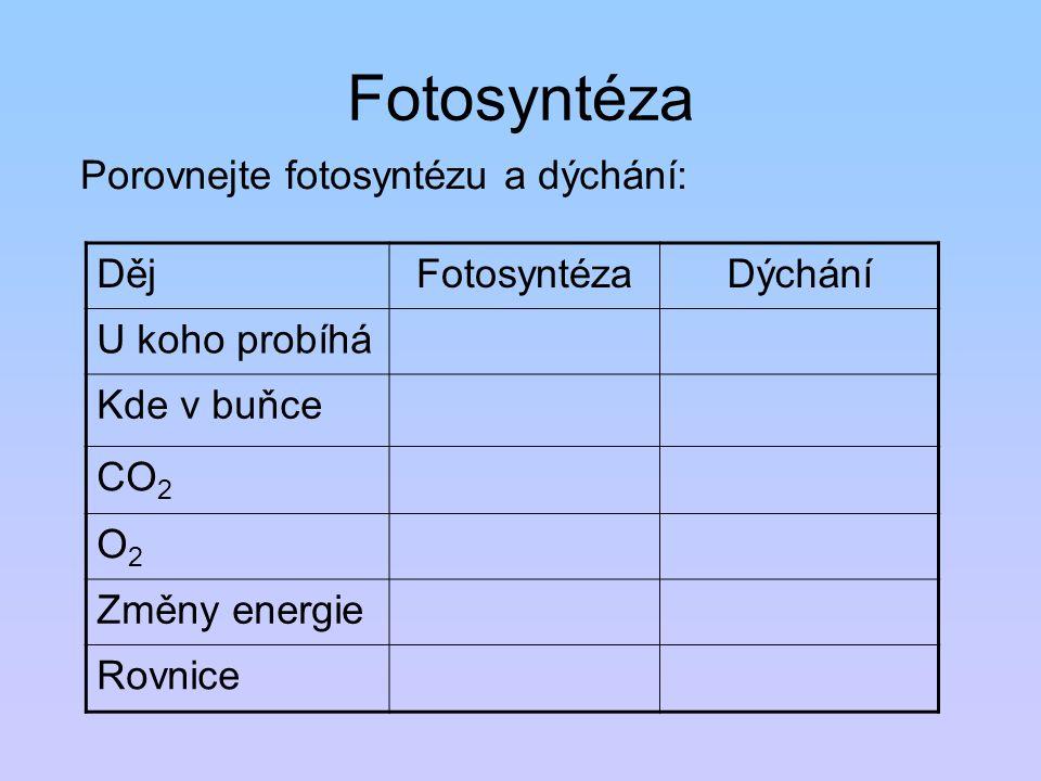 Fotosyntéza Porovnejte fotosyntézu a dýchání: DějFotosyntézaDýchání U koho probíhá Kde v buňce CO 2 O2O2 Změny energie Rovnice