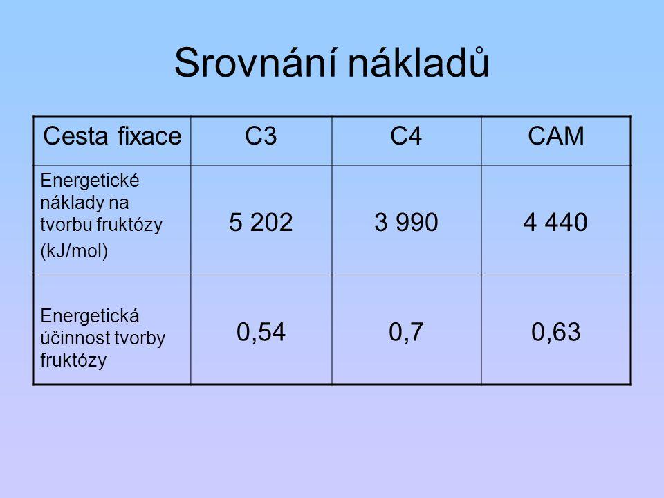 Srovnání nákladů Cesta fixaceC3C4CAM Energetické náklady na tvorbu fruktózy (kJ/mol) 5 2023 9904 440 Energetická účinnost tvorby fruktózy 0,540,70,63
