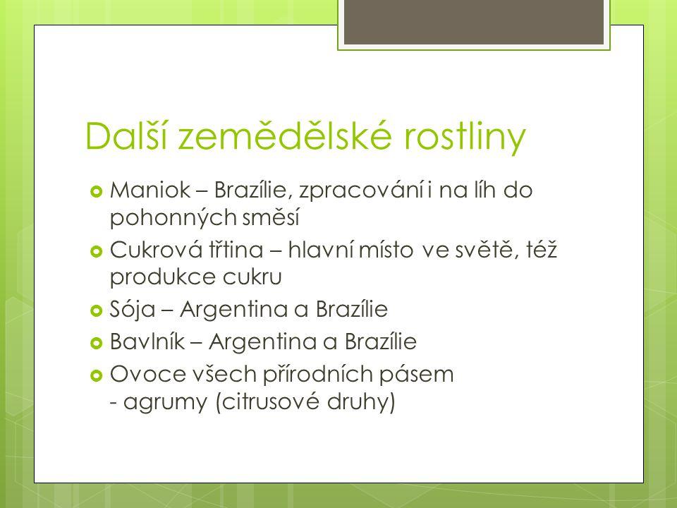 Další zemědělské rostliny  Maniok – Brazílie, zpracování i na líh do pohonných směsí  Cukrová třtina – hlavní místo ve světě, též produkce cukru  S