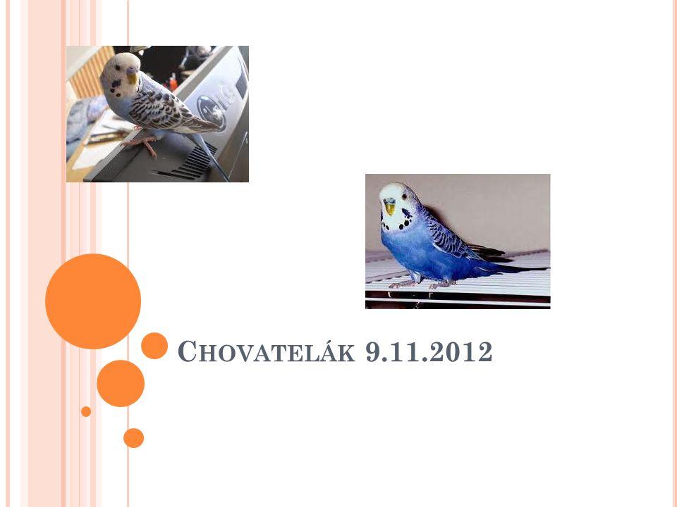 C HOVATELÁK 9.11.2012