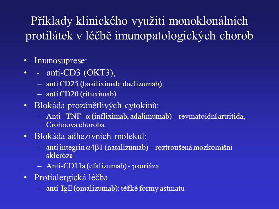 Příklady klinického využití monoklonálních protilátek v léčbě imunopatologických chorob Imunosuprese: - anti-CD3 (OKT3), –anti CD25 (basiliximab, daclizumab), –anti CD20 (rituximab) Blokáda prozánětlivých cytokinů: –Anti –TNF  (infliximab, adalimumab) – revmatoidní artritida, Crohnova choroba, Blokáda adhezivních molekul: –anti integrin  4  1 (natalizumab) – roztroušená mozkomíšní skleróza –Anti-CD11a (efalizumab) - psoriáza Protialergická léčba –anti-IgE (omalizumab): těžké formy astmatu
