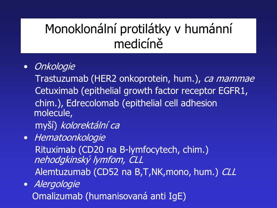 Monoklonální protilátky v humánní medicíně Onkologie Trastuzumab (HER2 onkoprotein, hum.), ca mammae Cetuximab (epithelial growth factor receptor EGFR1, chim.), Edrecolomab (epithelial cell adhesion molecule, myší) kolorektální ca Hematoonkologie Rituximab (CD20 na B-lymfocytech, chim.) nehodgkinský lymfom, CLL Alemtuzumab (CD52 na B,T,NK,mono, hum.) CLL Alergologie Omalizumab (humanisovaná anti IgE)