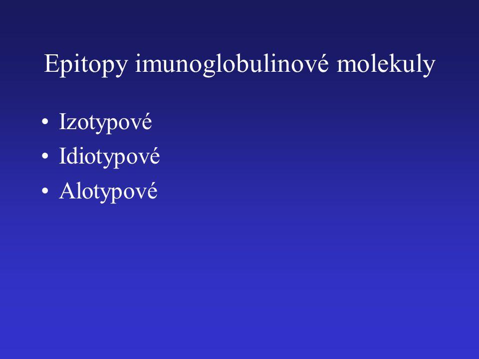Epitopy imunoglobulinové molekuly Izotypové Idiotypové Alotypové