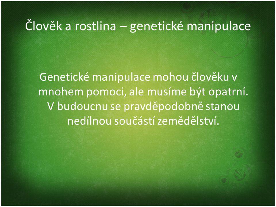 Člověk a rostlina – genetické manipulace Genetické manipulace mohou člověku v mnohem pomoci, ale musíme být opatrní.