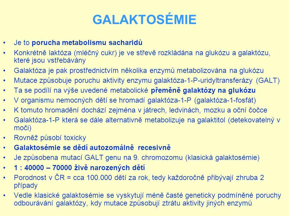 GALAKTOSÉMIE Je to porucha metabolismu sacharidů Konkrétně laktóza (mléčný cukr) je ve střevě rozkládána na glukózu a galaktózu, které jsou vstřebáván