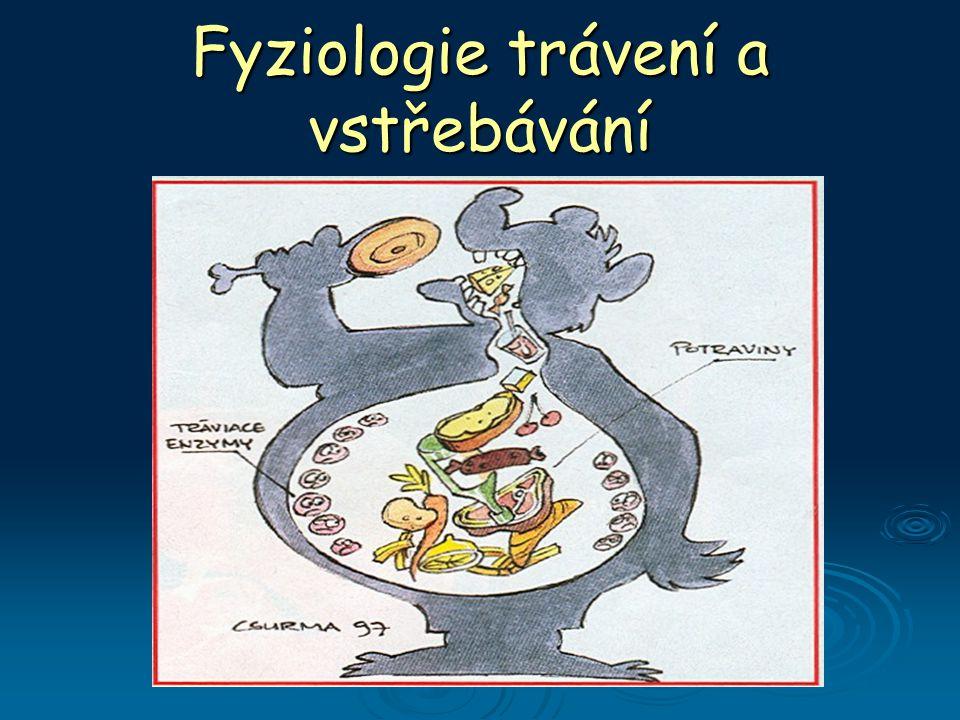 Fyziologie trávení a vstřebávání