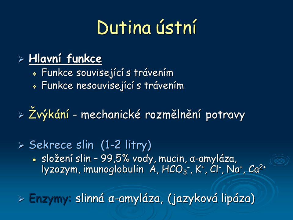 Dutina ústní  Hlavní funkce  Funkce související s trávením  Funkce nesouvisející s trávením  Žvýkání - mechanické rozmělnění potravy  Sekrece slin (1-2 litry) složení slin – 99,5% vody, mucin, α-amyláza, lyzozym, imunoglobulin A, HCO 3 -, K +, Cl -, Na +, Ca 2+ složení slin – 99,5% vody, mucin, α-amyláza, lyzozym, imunoglobulin A, HCO 3 -, K +, Cl -, Na +, Ca 2+  Enzymy: slinná α-amyláza, (jazyková lipáza)