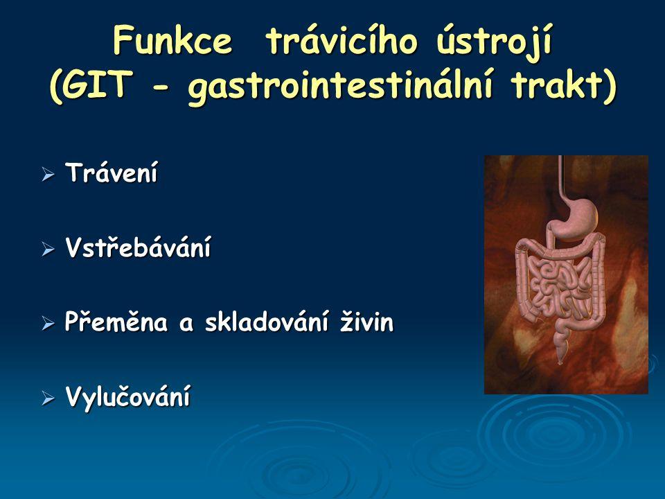 Funkce trávicího ústrojí (GIT - gastrointestinální trakt)  Trávení  Vstřebávání  Přeměna a skladování živin  Vylučování