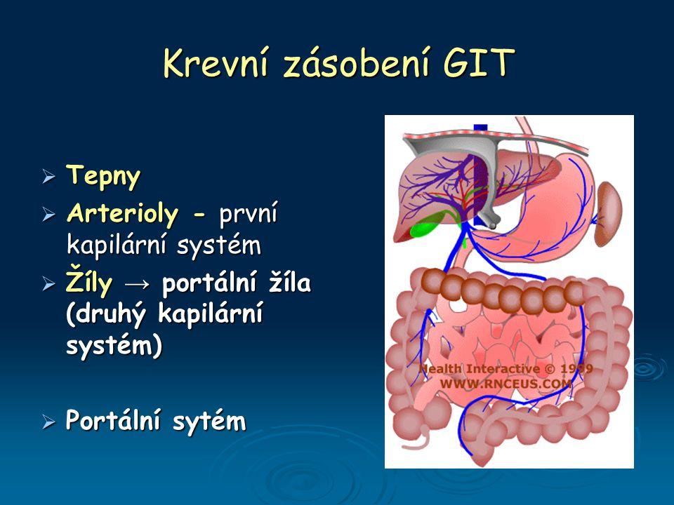 Krevní zásobení GIT  Tepny  Arterioly - první kapilární systém  Žíly → portální žíla (druhý kapilární systém)  Portální sytém