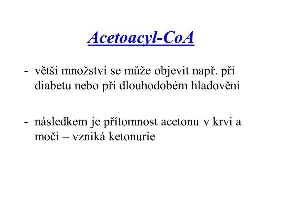 Acetoacyl-CoA -větší množství se může objevit např. při diabetu nebo při dlouhodobém hladovění -následkem je přítomnost acetonu v krvi a moči – vzniká