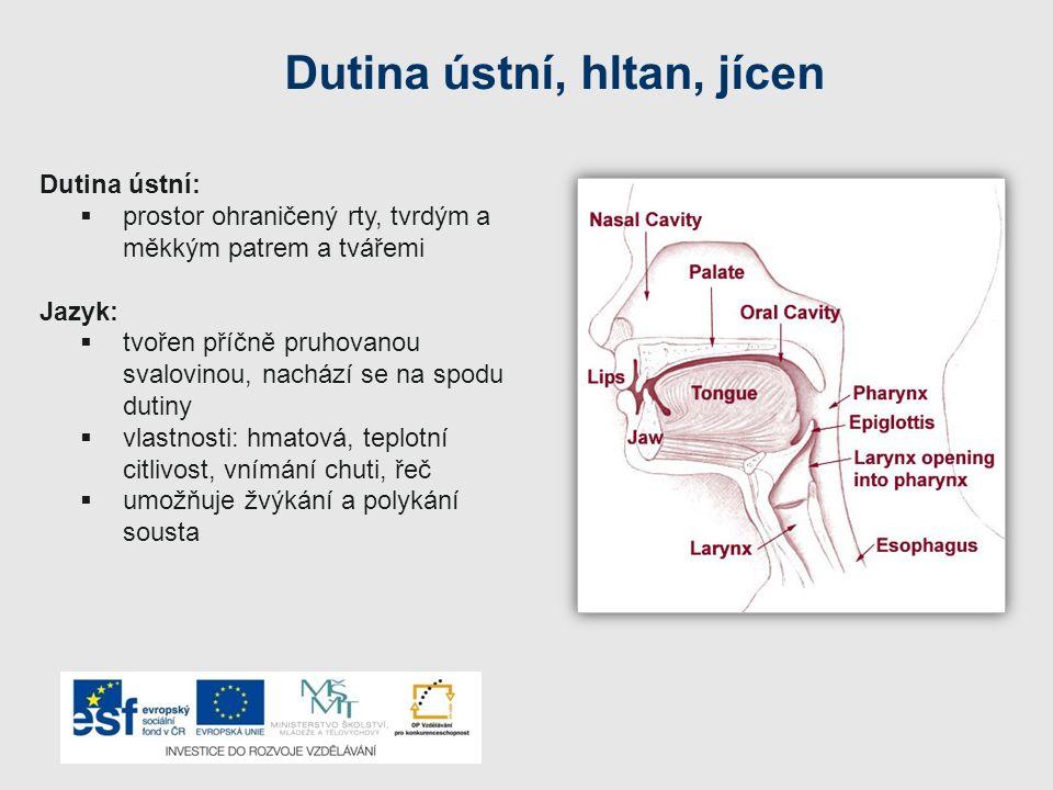 Onemocnění orgánů trávicí soustavy Žlučníková kolika – způsobují žlučové kameny, které vytváří vysrážený cholesterol – může dojít k ucpání žlučovodů Vředy (natrávení sliznice žaludku)– vznik vlivem duševního přetížení, nesprávné životosprávy, působením bakterií Žaludeční vřed