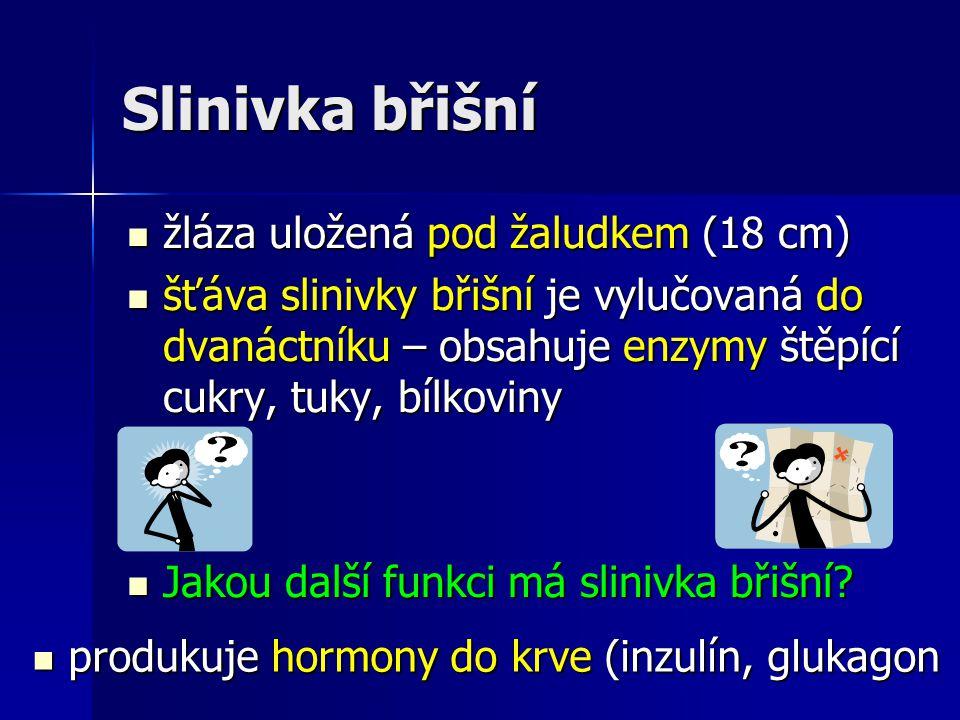 Slinivka břišní produkuje hormony do krve (inzulín, glukagon produkuje hormony do krve (inzulín, glukagon žláza uložená pod žaludkem (18 cm) žláza ulo
