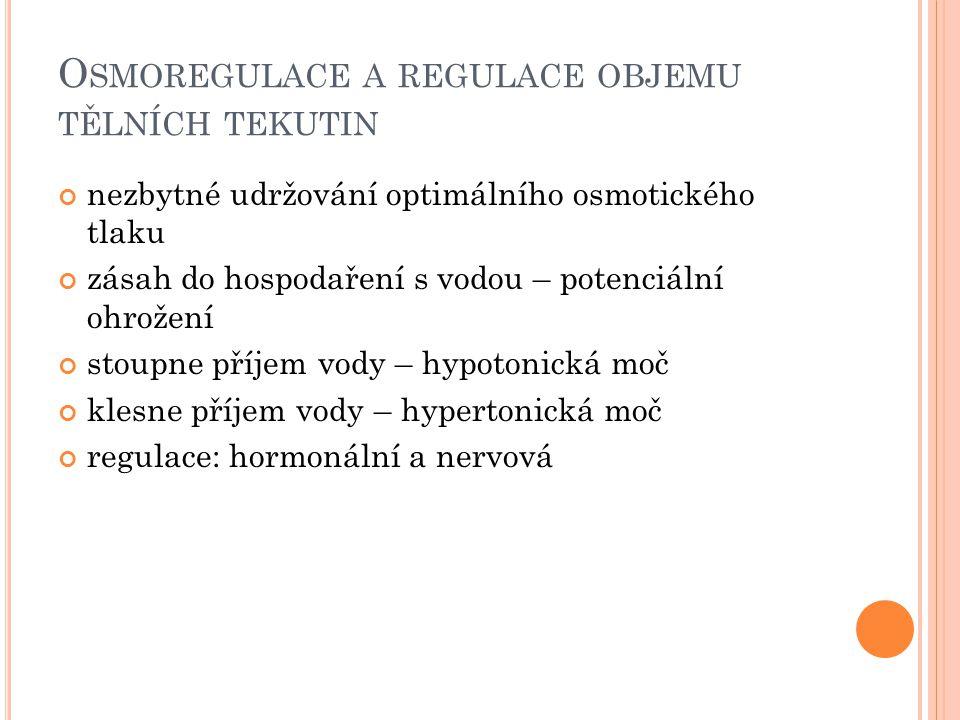 O SMOREGULACE A REGULACE OBJEMU TĚLNÍCH TEKUTIN nezbytné udržování optimálního osmotického tlaku zásah do hospodaření s vodou – potenciální ohrožení stoupne příjem vody – hypotonická moč klesne příjem vody – hypertonická moč regulace: hormonální a nervová