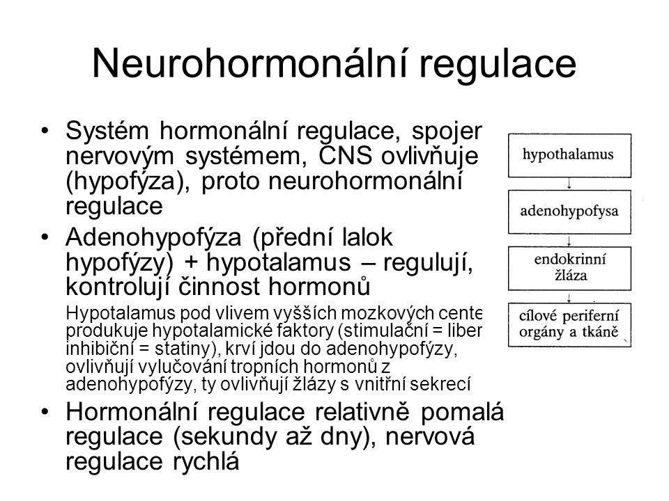 Neurohormonální regulace Systém hormonální regulace, spojen s nervovým systémem, CNS ovlivňuje (hypofýza), proto neurohormonální regulace Adenohypofýz